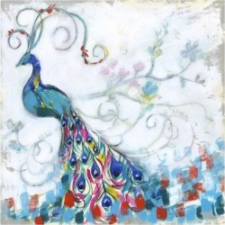 Stretched Canvas Print: Goldberger's Confetti Peacock II, 16x16in. found on Bargain Bro Philippines from Allposters.com for $120.99