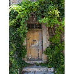Art Print: Lebens Art's Rustic Door, 32x24in.