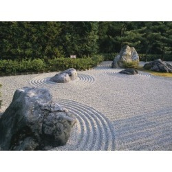 Poster: Jenner's Poster: Poster of Raked Stone Garden, Taizo-In Temple