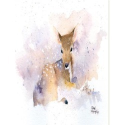 Stretched Canvas Print: McNaughton's Baby Deer, 48x36in. found on Bargain Bro from Allposters.com for USD $21.27
