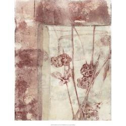 Giclee Painting: Goldberger's Art Print: Framed Blossoms Art Print by