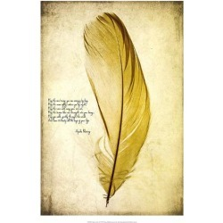 Giclee Painting: Malek's Feather in Color IV, 26x18in.