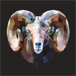 Art Print: Kroll's Ram, 12x12in.