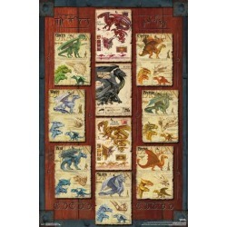 Poster: DUNGEONS AND DRAGONS - DRAGON GRID, 34x22in.