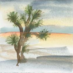 Art Print: Paschke's Desert Joshua Tree Cool, 16x16in.