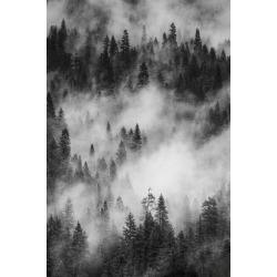Poster: Zimmerman's California. Yosemite National Park. Black and Whit