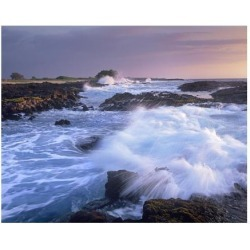 Art Print: Fitzharris' Waves crashing on rocky shore, Wawaloli Beach,
