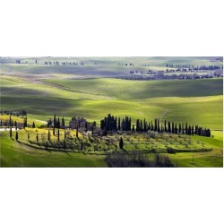 Art Print: Ratsenskiy's Country Houses in Tuscany, 38x74in.