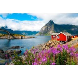 Poster: Uspenskaya's Tipical Red Fishing Houses in a Harbor on Lofoten