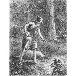 Giclee Painting: Johnny Appleseed Planting Apple Seeds in Wilderness,