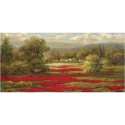 Art Print: Poppy Village by Hulsey: 26x50in