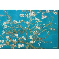 Stretched Canvas Print: Almond Branches in Bloom, San Remy, c.1890 by Vincent van Gogh: 24x37in found on Bargain Bro India from Art.com for $195.00