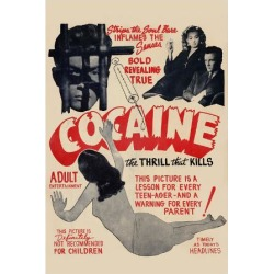 Art Print: Poster of Cocaine: 24x18in found on Bargain Bro India from Art.com for $20.00