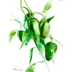 Art Print: Jalapeno Pepper by Suren Nersisyan: 16x12in found on Bargain Bro from Art.com for USD $15.20