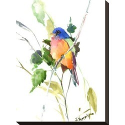 Stretched Canvas Print: Painted Bunting by Suren Nersisyan: 15x11in found on Bargain Bro India from Art.com for $75.00