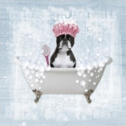 Art Print: Bath Time Bubbles 2 by Marcus Prime: 13x13in found on Bargain Bro India from Art.com for $17.00