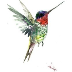 Stretched Canvas Print: Hummingbird 4 by Suren Nersisyan: 24x18in found on Bargain Bro India from Art.com for $100.00