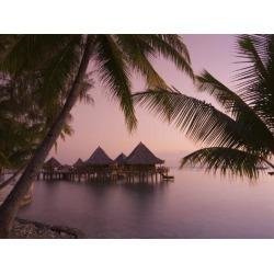 Photographic Print: Kia Ora Resort, Rangiroa, Tuamotu Archipelago, French Polynesia Islands by Sergio Pitamitz: 24x18in found on Bargain Bro Philippines from Art.com for $22.00