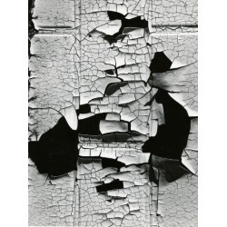 Photographic Print: Cracked Paint, 1971 by Brett Weston: 12x9in