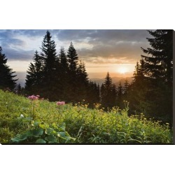 Stretched Canvas Print: Sunset in the National Park Berchtesgadener Land, Upper Bavaria, Bavaria, Germany: 29x44in found on Bargain Bro Philippines from Art.com for $200.00