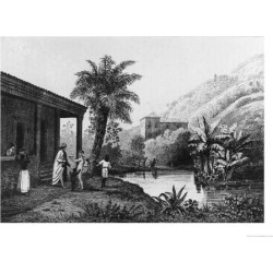 Giclee Print: Coffee Plantation, from Bresil, Columbie et Guyanes by Ferdinand Denis and Cesar Famin 1837: 24x18in