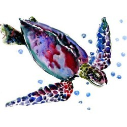 Giclee Print: Swimming Turtle by Suren Nersisyan: 30x40in found on Bargain Bro India from Art.com for $159.99