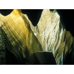 Photographic Print: Cave Decorations and Grotto, Carlsbad Caverns National Park, New Mexico, USA by Scott T. Smith: 24x18in