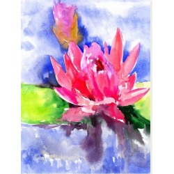 Stretched Canvas Print: Lotus Flower by Suren Nersisyan: 48x36in found on Bargain Bro India from Art.com for $160.00