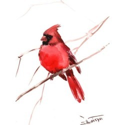 Giclee Print: Cardinal Red by Suren Nersisyan: 24x18in found on Bargain Bro from Art.com for USD $32.68