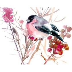 Giclee Print: Bullfinch by Suren Nersisyan: 24x32in found on Bargain Bro Philippines from Art.com for $99.99