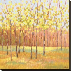 Stretched Canvas Print: Yellow and Green Trees (center) by Libby Smart: 20x20in found on Bargain Bro from Art.com for USD $76.00