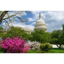 Photographic Print: United States Capitol - Washington D.C. USA by Orhan: 24x16in