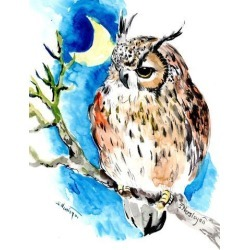 Giclee Print: Sleeping Owl 2 by Suren Nersisyan: 16x12in found on Bargain Bro India from Art.com for $30.00