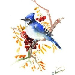 Art Print: Blue Jay 12 by Suren Nersisyan: 24x18in found on Bargain Bro from Art.com for USD $19.00