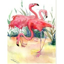 Stretched Canvas Print: Flamingos by Suren Nersisyan: 40x30in found on Bargain Bro India from Art.com for $140.00