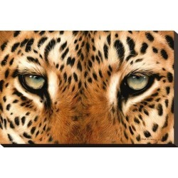Stretched Canvas Print: Leopard Eyes Painting by Sarah Stribbling: 14x21in found on Bargain Bro Philippines from Art.com for $95.00