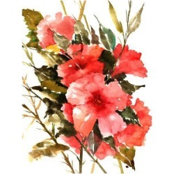 Giclee Print: Hibiscus by Suren Nersisyan: 48x36in found on Bargain Bro India from Art.com for $135.00