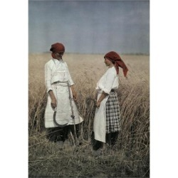 Photographic Print: Two Women Stand in a Field to Help Harvest Grain Outside Mohacs by Hans Hildenbrand: 24x16in
