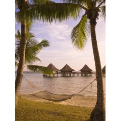 Photographic Print: Kia Ora Resort, Rangiroa, Tuamotus, French Polynesia, South Pacific, Pacific by Michael DeFreitas: 24x18in found on Bargain Bro Philippines from Art.com for $22.00