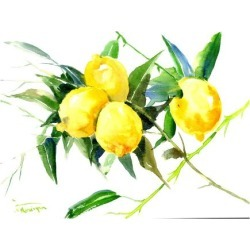 Art Print: Lemon Bunch by Suren Nersisyan: 18x24in found on Bargain Bro from Art.com for USD $19.00