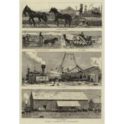 Giclee Print: Wheat Farming in California: 24x16in