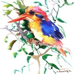 Giclee Print: Oriental Kingfisher by Suren Nersisyan: 12x12in found on Bargain Bro Philippines from Art.com for $30.00