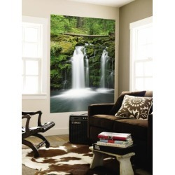Wall Mural: Dennis Flaherty Wall Decal by Dennis Flaherty: 72x48in