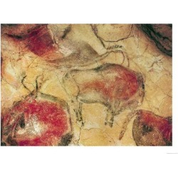 Giclee Print: Bisons, from the Caves at Altamira, circa 15000 BC (Cave Painting) : 16x12in