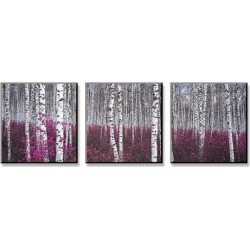 Mounted Print: Silver Birch Forest, China: 13x37in