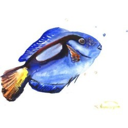 Art Print: Blue Coral Fish by Suren Nersisyan: 18x24in found on Bargain Bro Philippines from Art.com for $20.00