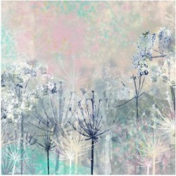 Premium Giclee Print: Cow Parsley blues by Claire Westwood: 36x48in