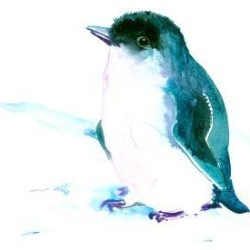 Art Print: Baby Penguin 3 by Suren Nersisyan: 16x12in found on Bargain Bro from Art.com for USD $15.20