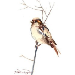 Art Print: Sparrow 4 by Suren Nersisyan: 16x12in found on Bargain Bro from Art.com for USD $15.20