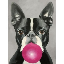 Stretched Canvas Print: Boston Terrier With Bubblegum by Coco de Paris: 40x30in found on Bargain Bro Philippines from Art.com for $225.00